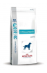 ROYAL CAN HYPOALLERGENIC 10KG (5901100)