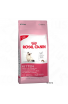 ROYAL FEL KITTEN 7,5KG (3680075)
